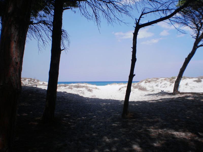 Sardegna casa vacanze indipendente in affitto vicino al mare for Case sardegna affitto
